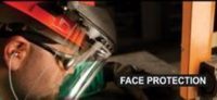 Face Protection.JPG